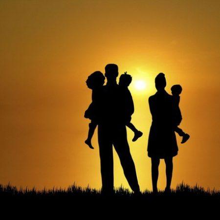 семья 2